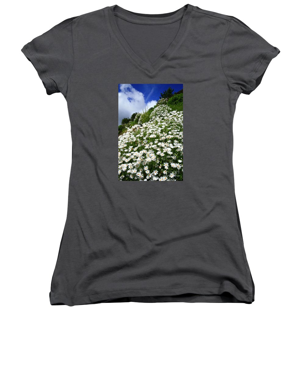 Countryside Women's V-Neck T-Shirt featuring the photograph Daisies by Gaspar Avila