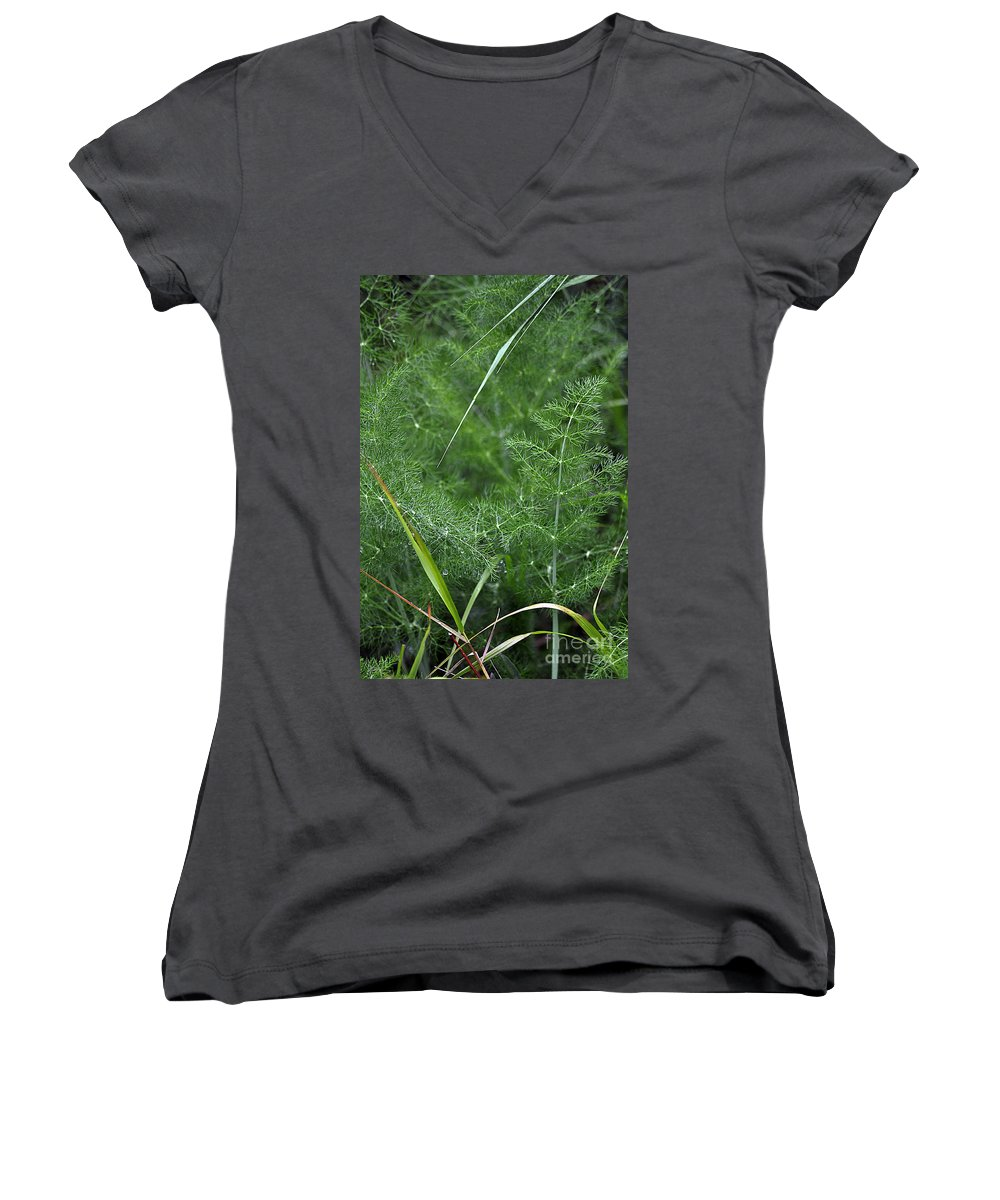 Clay Women's V-Neck (Athletic Fit) featuring the photograph Dew On The Ferns by Clayton Bruster