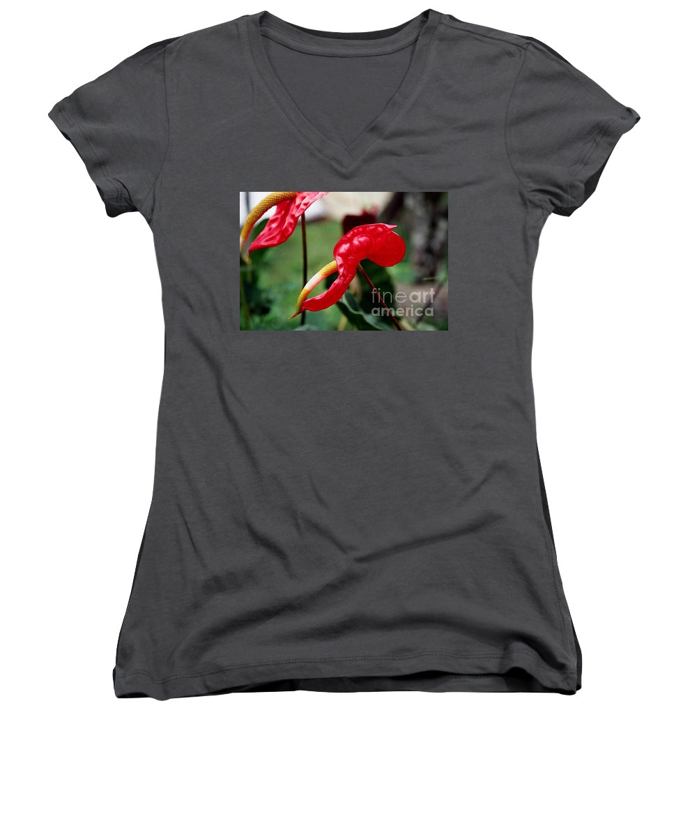 Exotic Flowers Women's V-Neck T-Shirt featuring the photograph Flamingo Flower by Kathy McClure