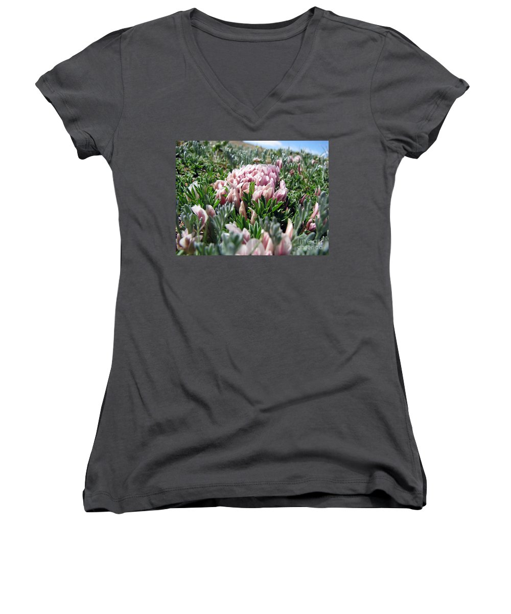 Flowers Women's V-Neck (Athletic Fit) featuring the photograph Flowers In The Alpine Tundra by Amanda Barcon