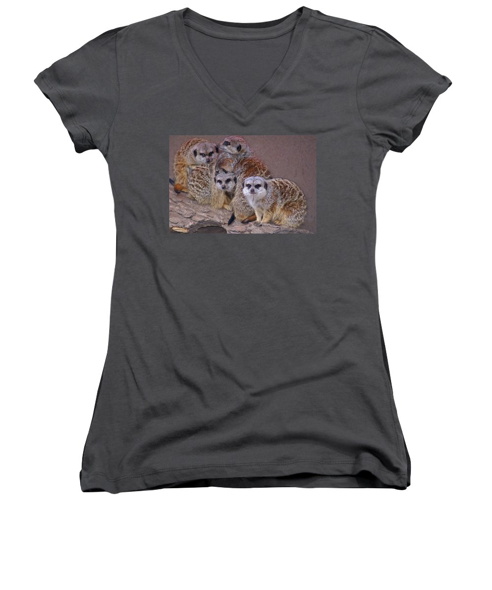 Mer Cats Women's V-Neck (Athletic Fit) featuring the photograph Freezing Meer Cats by Heather Coen