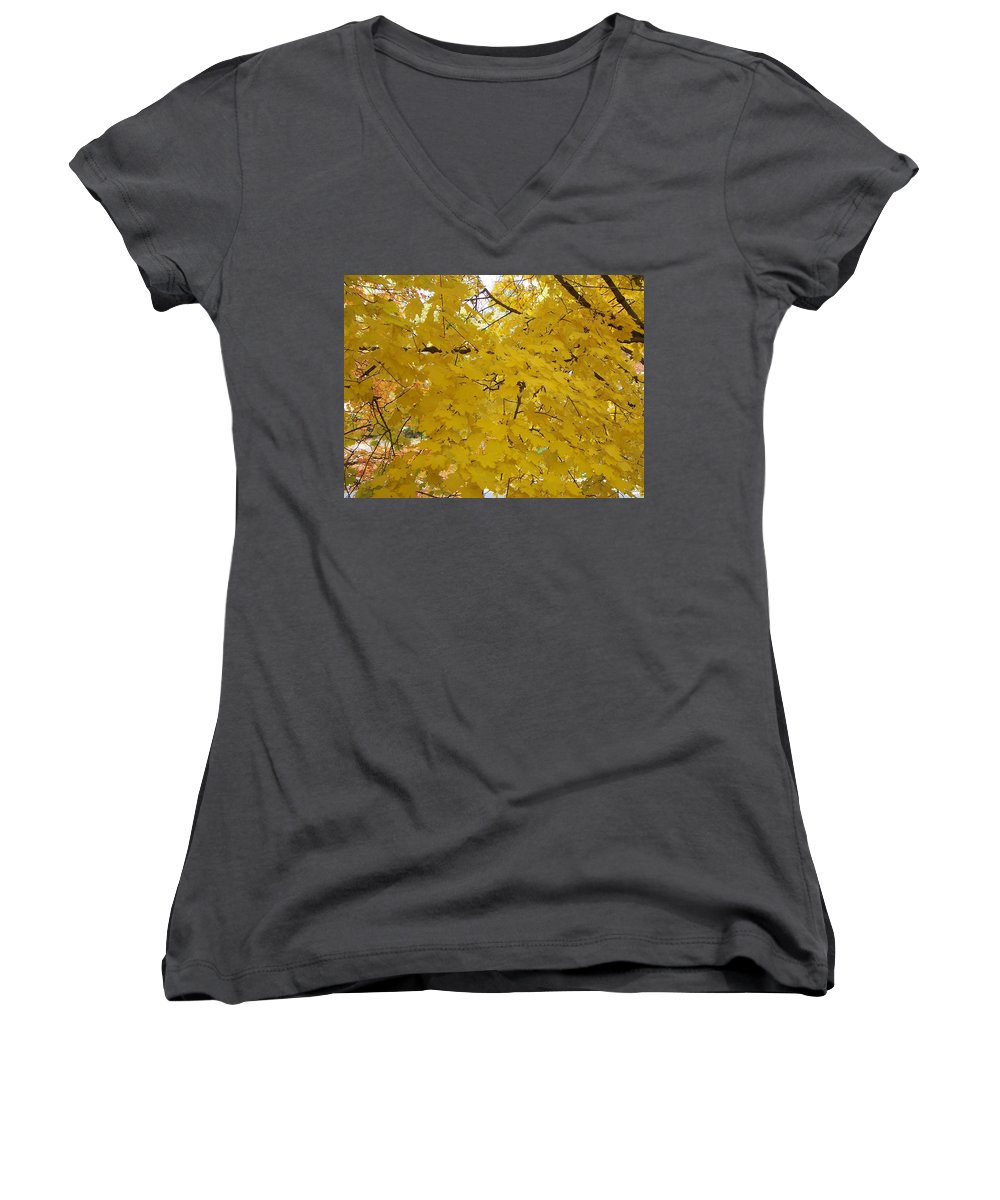 Fall Autum Trees Maple Yellow Women's V-Neck (Athletic Fit) featuring the photograph Golden Canopy by Karin Dawn Kelshall- Best