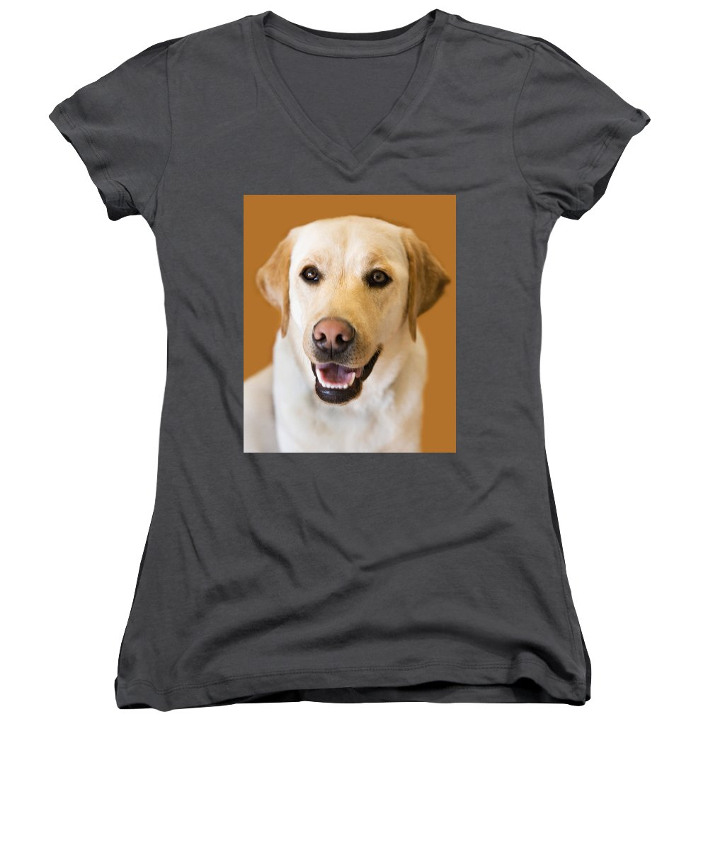 Lab Women's V-Neck (Athletic Fit) featuring the photograph Golden Lab by Marilyn Hunt
