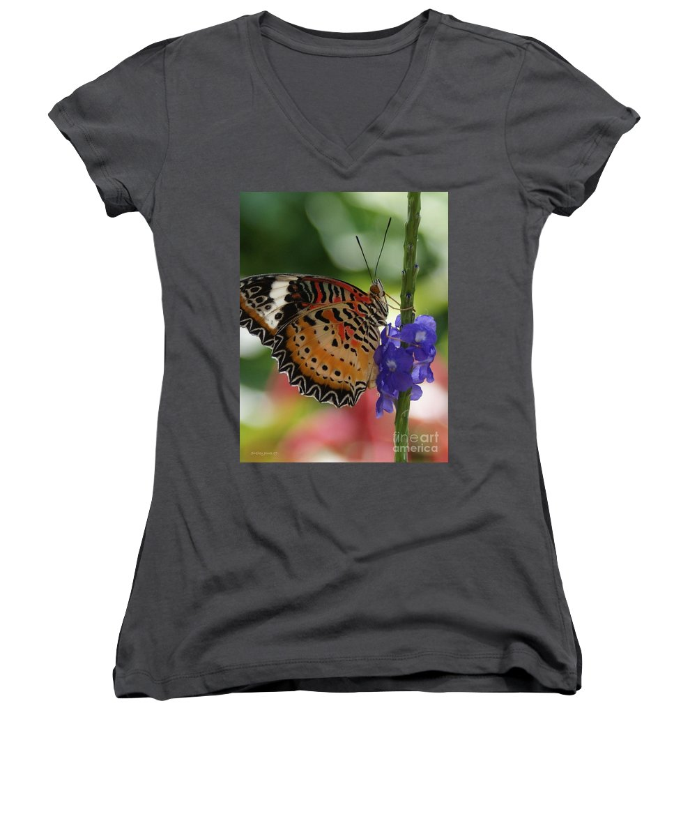 Butterfly Women's V-Neck T-Shirt featuring the photograph Hanging On by Shelley Jones