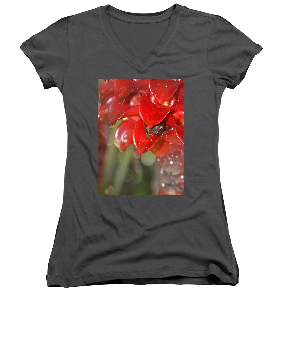 Frog Women's V-Neck (Athletic Fit) featuring the digital art Hawaiian Frog by Heather Coen
