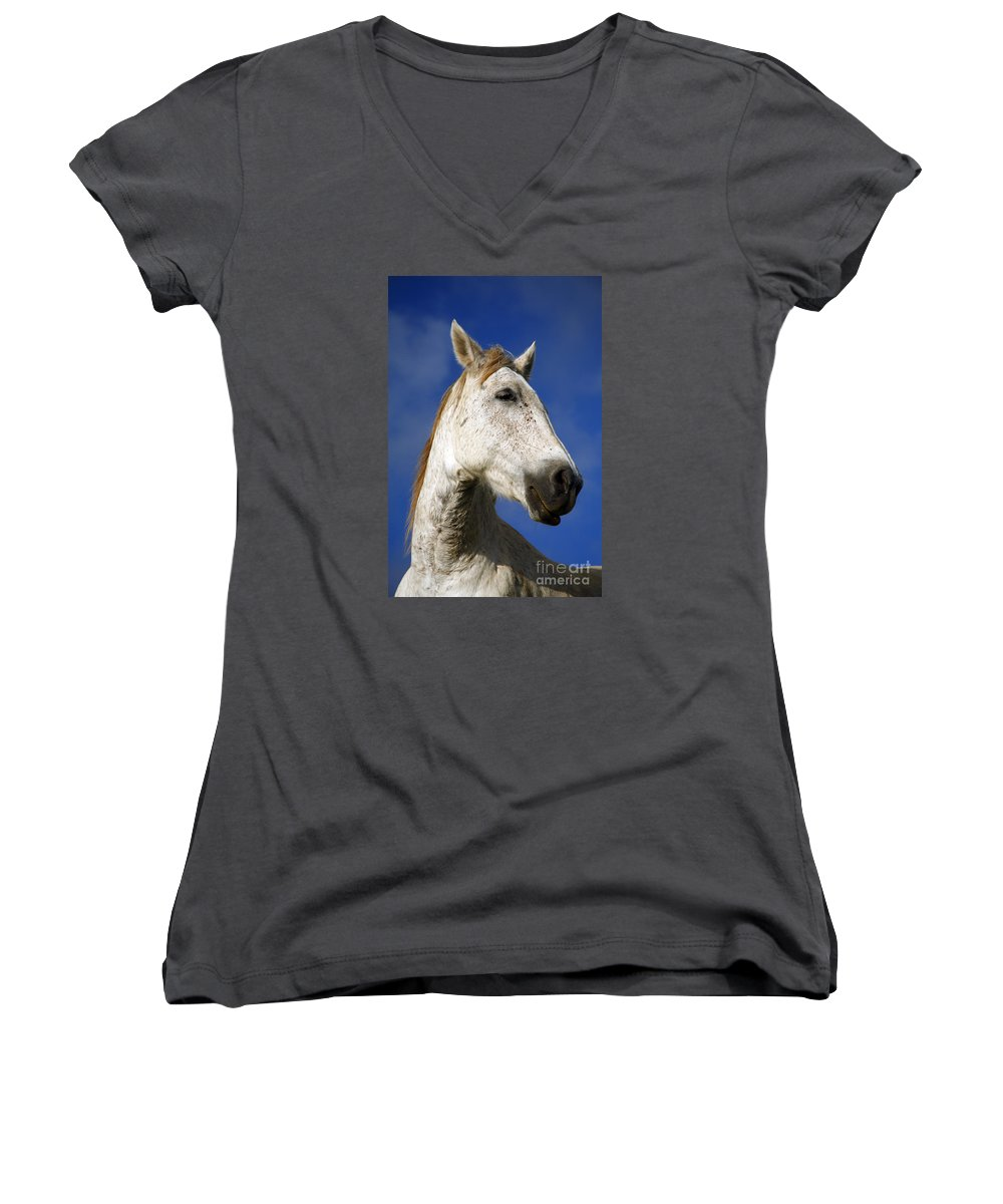 Animals Women's V-Neck (Athletic Fit) featuring the photograph Horse Portrait by Gaspar Avila