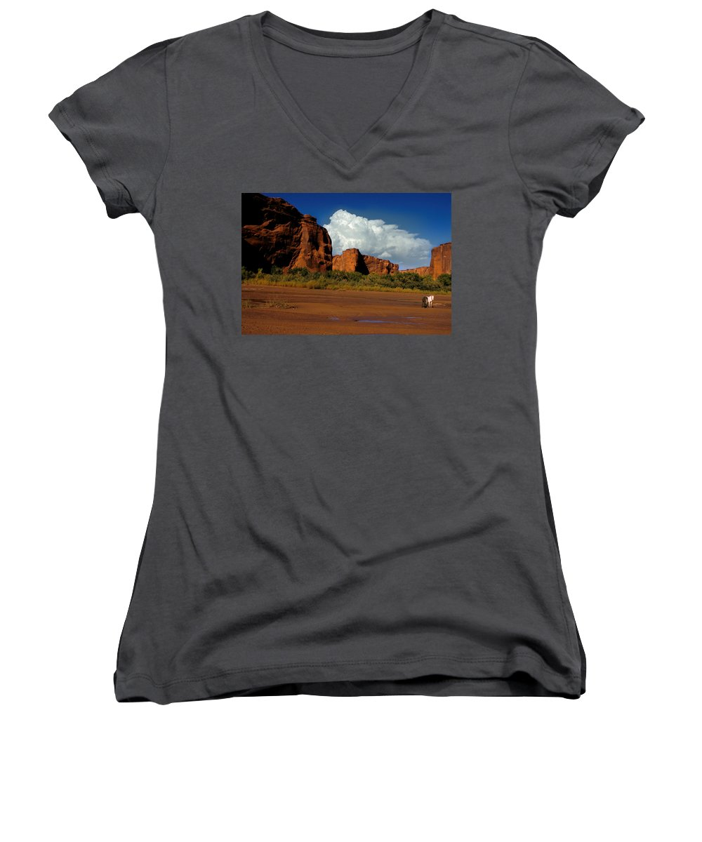 Horses Women's V-Neck T-Shirt featuring the photograph Indian Ponies In The Canyon by Jerry McElroy