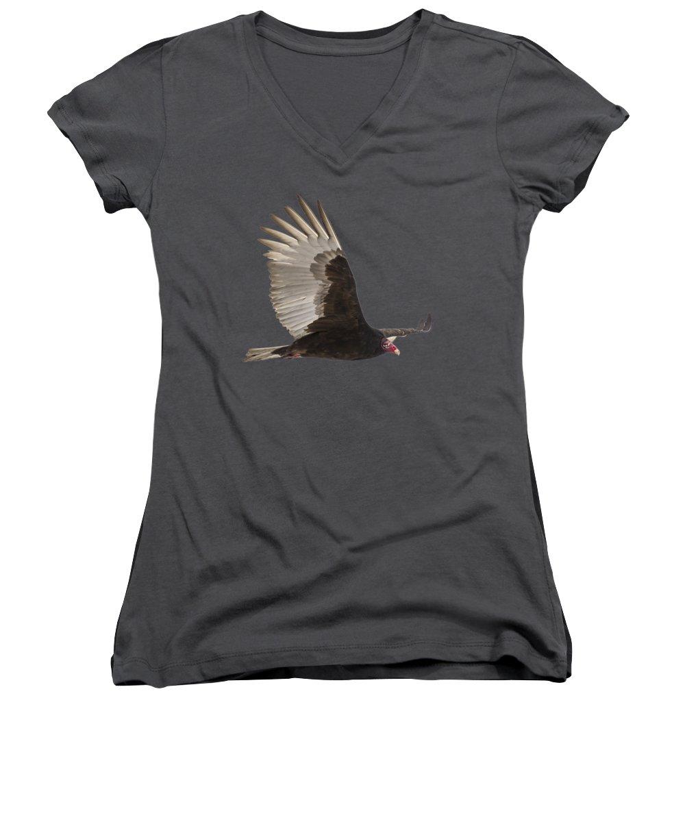 Vulture Women's V-Neck T-Shirts