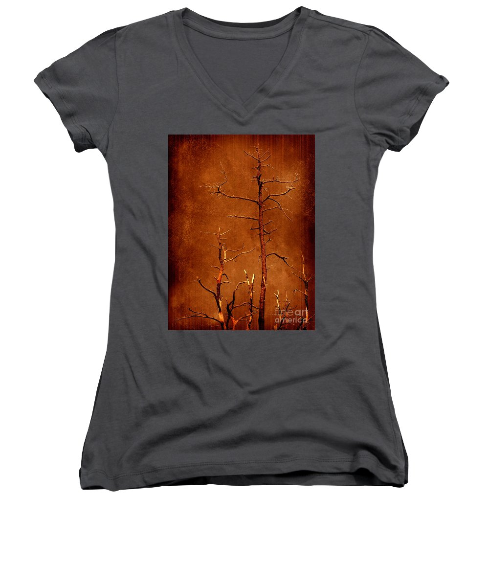 Dipasquale Women's V-Neck (Athletic Fit) featuring the photograph Left Bare And Broken by Dana DiPasquale