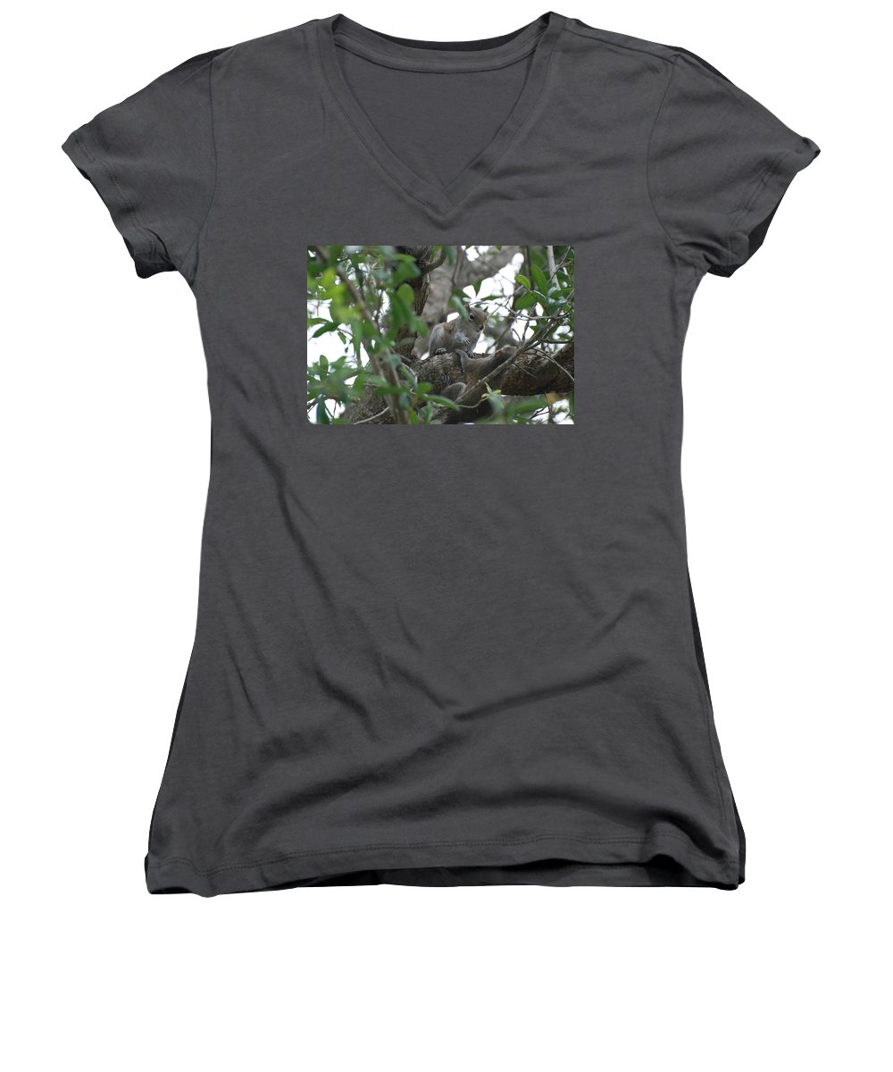 Squirrel Women's V-Neck T-Shirt featuring the photograph Lending A Helping Hand by Rob Hans