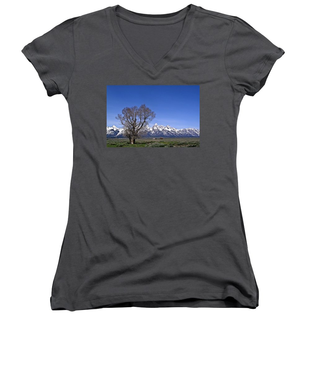 Tree Women's V-Neck T-Shirt featuring the photograph Lone Tree At Tetons by Douglas Barnett
