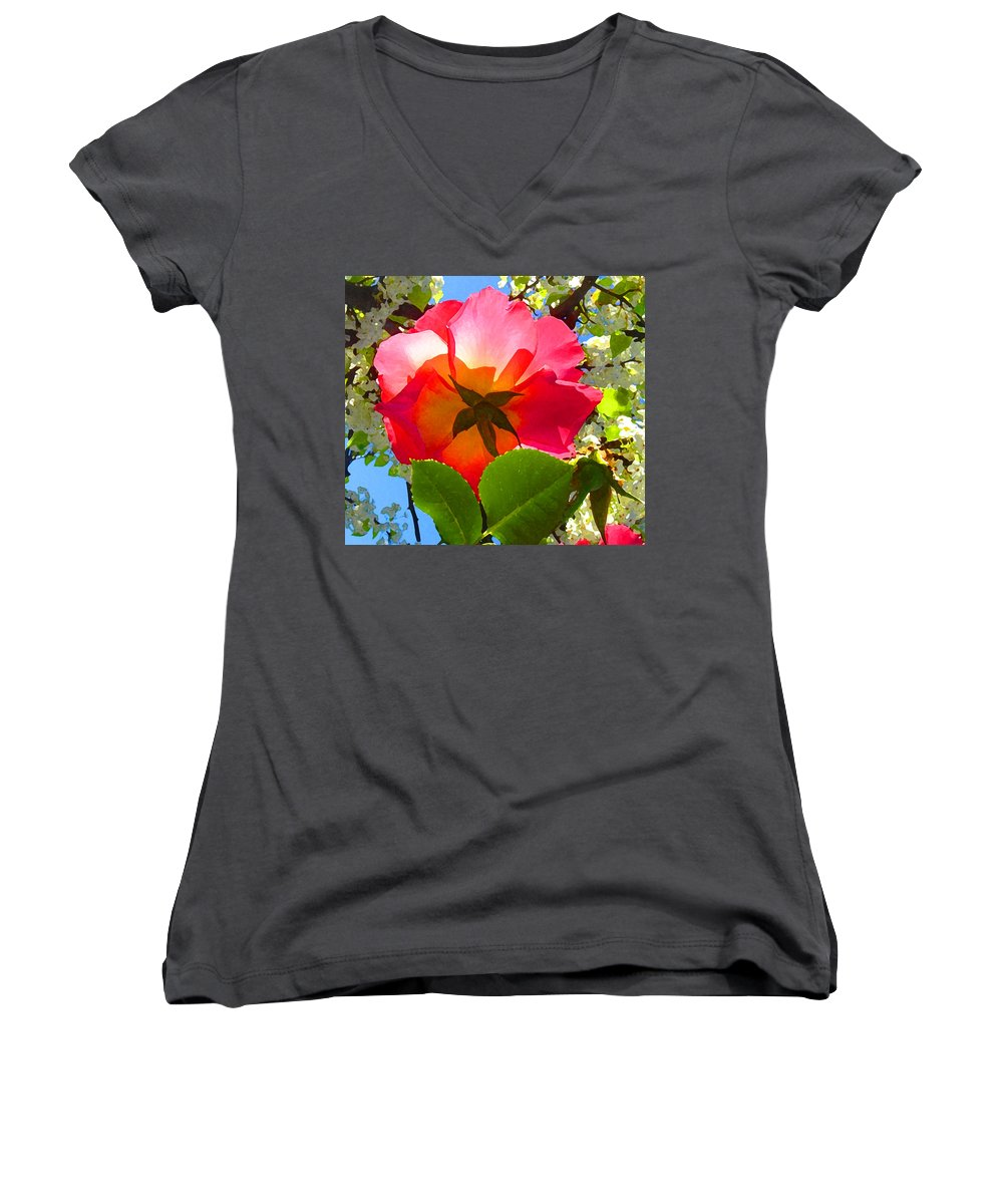 Roses Women's V-Neck T-Shirt featuring the photograph Looking Up At Rose And Tree by Amy Vangsgard