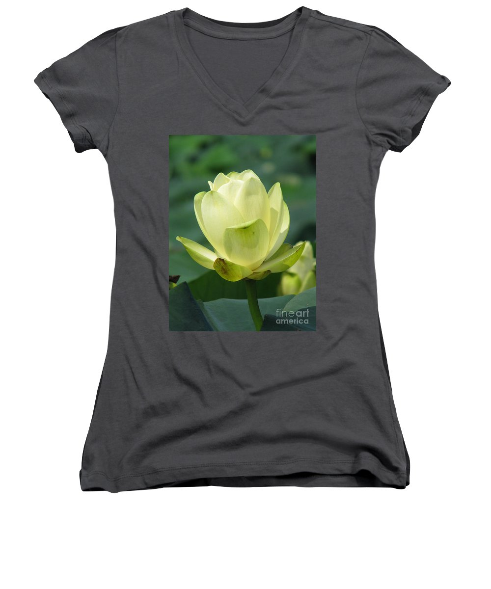 Lotus Women's V-Neck T-Shirt featuring the photograph Lotus by Amanda Barcon