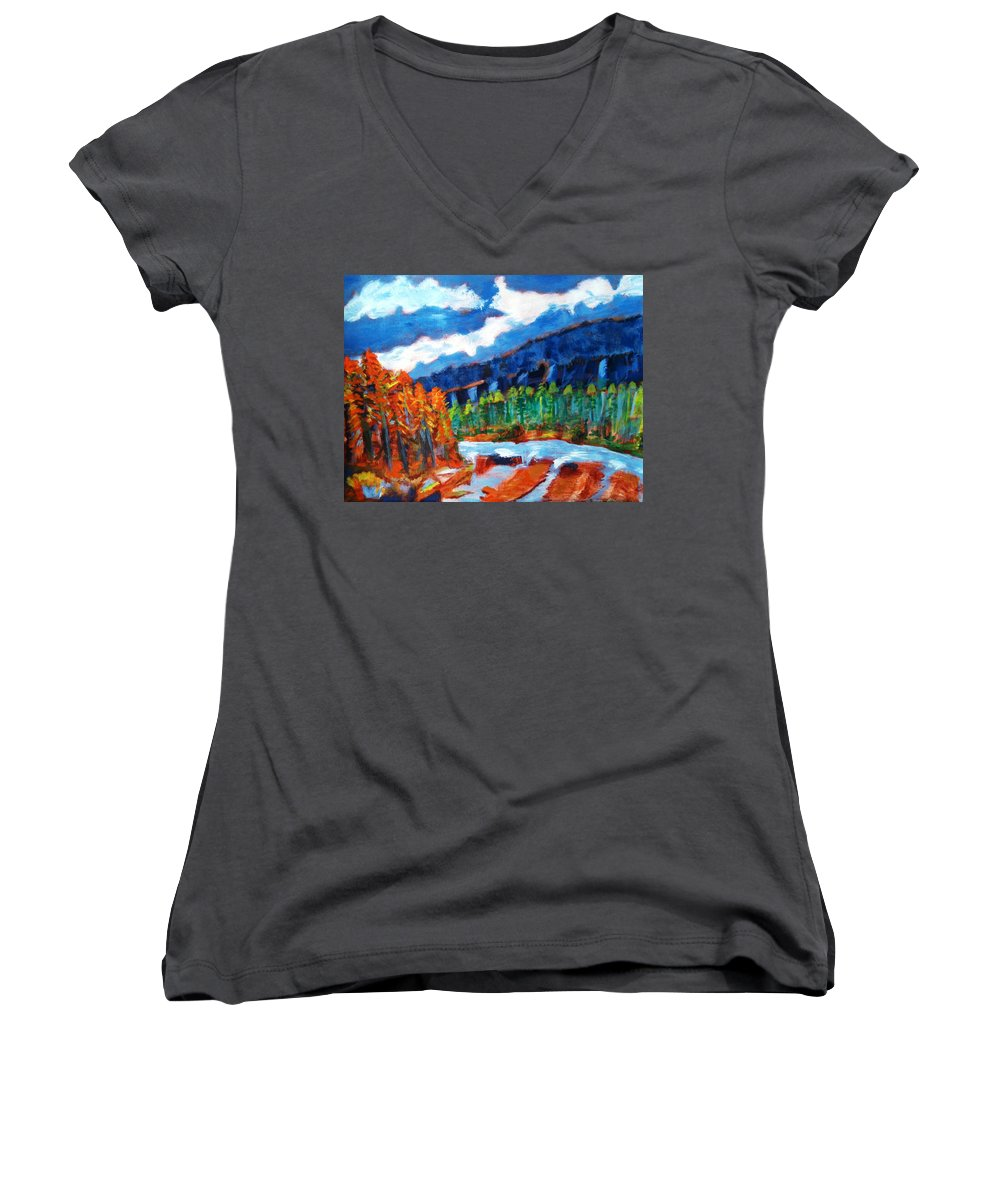 Mountains Women's V-Neck T-Shirt featuring the painting Naturals by R B