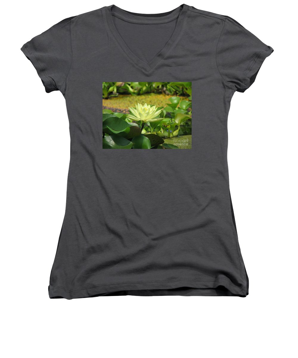 Nature Women's V-Neck T-Shirt featuring the photograph Nature by Amanda Barcon