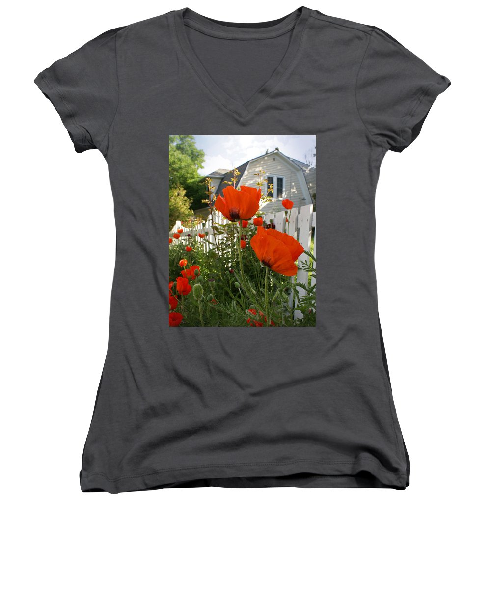 Poppies Women's V-Neck T-Shirt featuring the photograph Oriental Poppies by Heather Coen