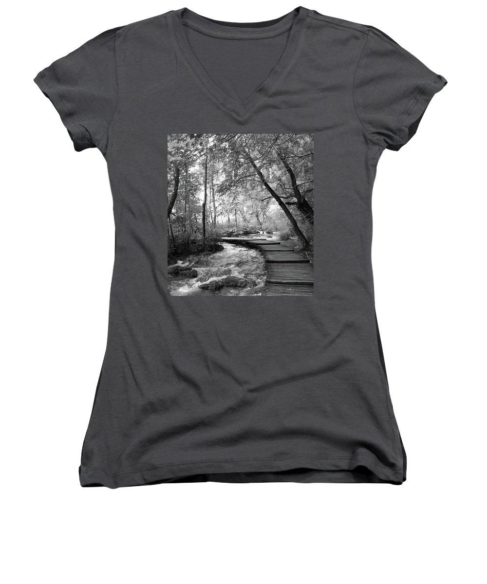 Travelpics Women's V-Neck T-Shirts