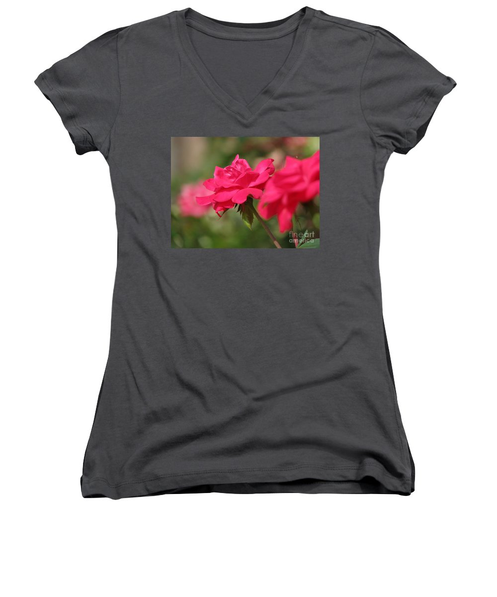 Rose Women's V-Neck (Athletic Fit) featuring the photograph Roses by Amanda Barcon