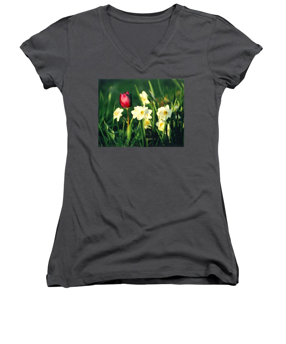 Tulips Women's V-Neck T-Shirt featuring the photograph Royal Spring by Steve Karol