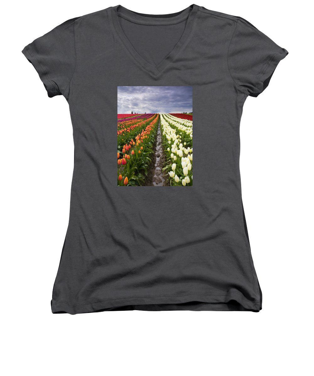 Tulips Women's V-Neck T-Shirt featuring the photograph Sea Of Color by Mike Dawson