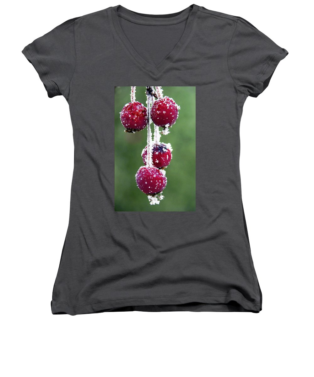 Berries Women's V-Neck T-Shirt featuring the photograph Seasonal Colors by Marilyn Hunt