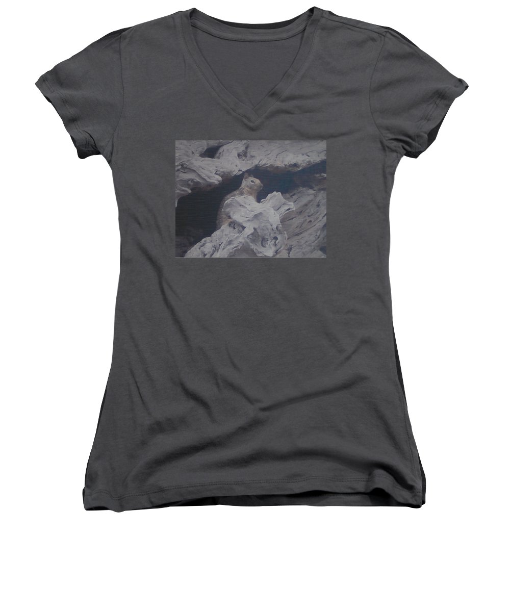 Squirrel Women's V-Neck T-Shirt featuring the photograph Silent Observer by Pharris Art