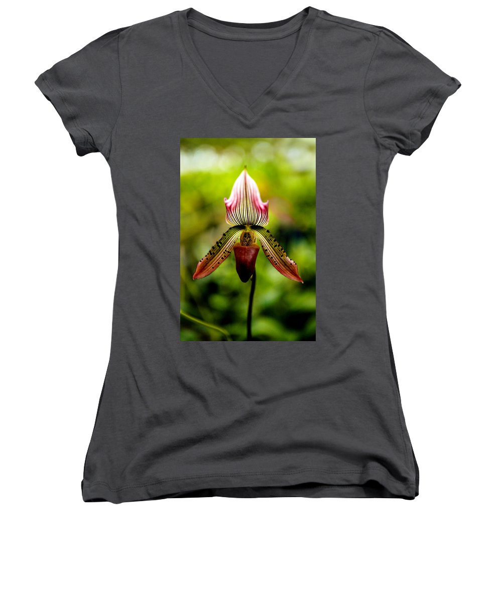 Orchid Women's V-Neck (Athletic Fit) featuring the photograph Singular Beauty by Marilyn Hunt