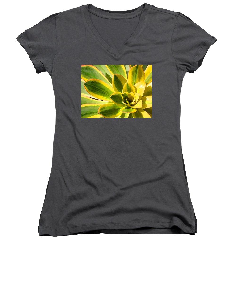 Landscape Women's V-Neck (Athletic Fit) featuring the photograph Sunburst Succulent Close-up 2 by Amy Vangsgard