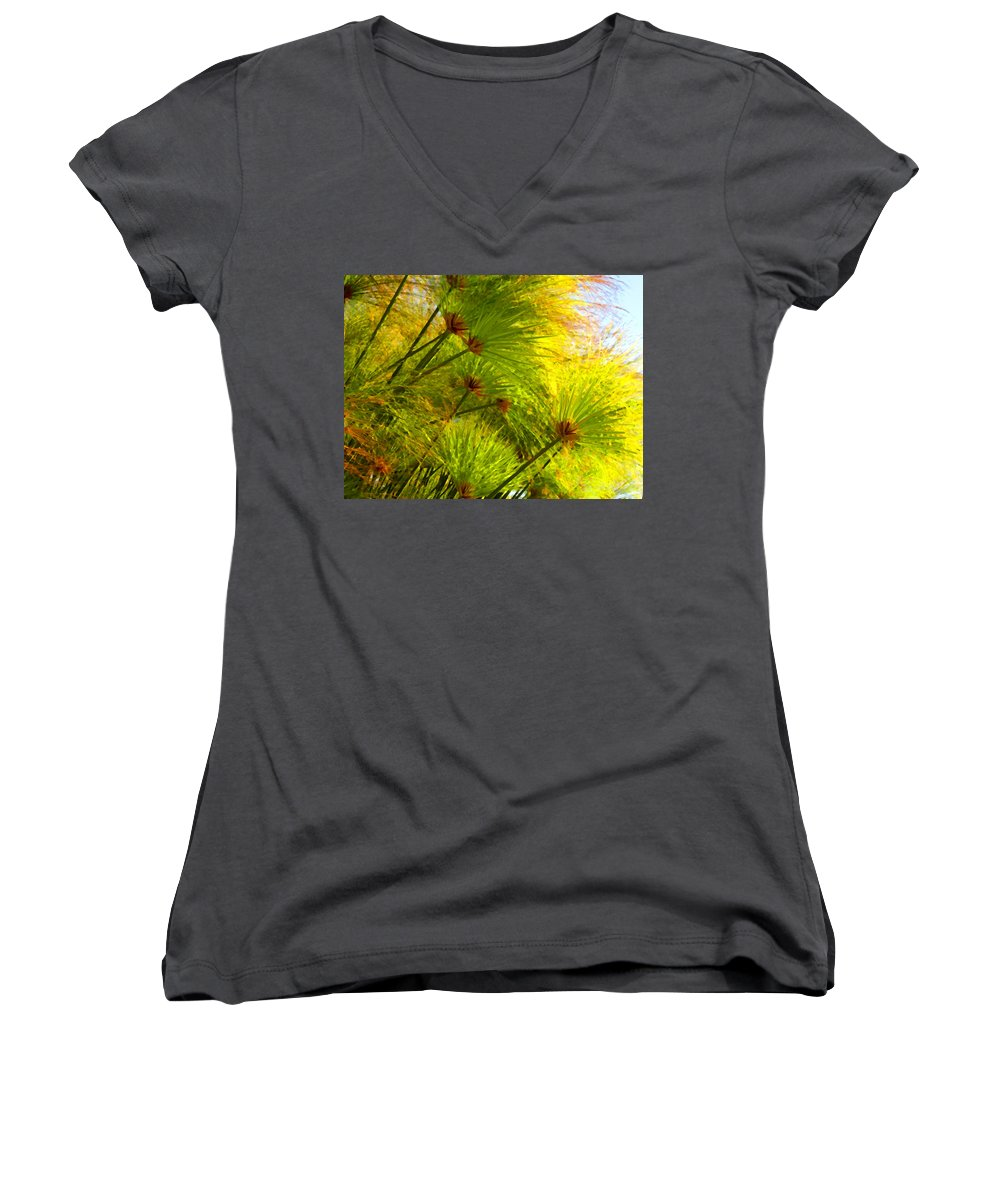 Landscape Women's V-Neck T-Shirt featuring the painting Sunlit Paparus by Amy Vangsgard