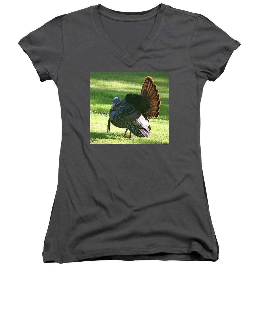 Turkey Women's V-Neck T-Shirt featuring the photograph The Big Tom by Robert Pearson