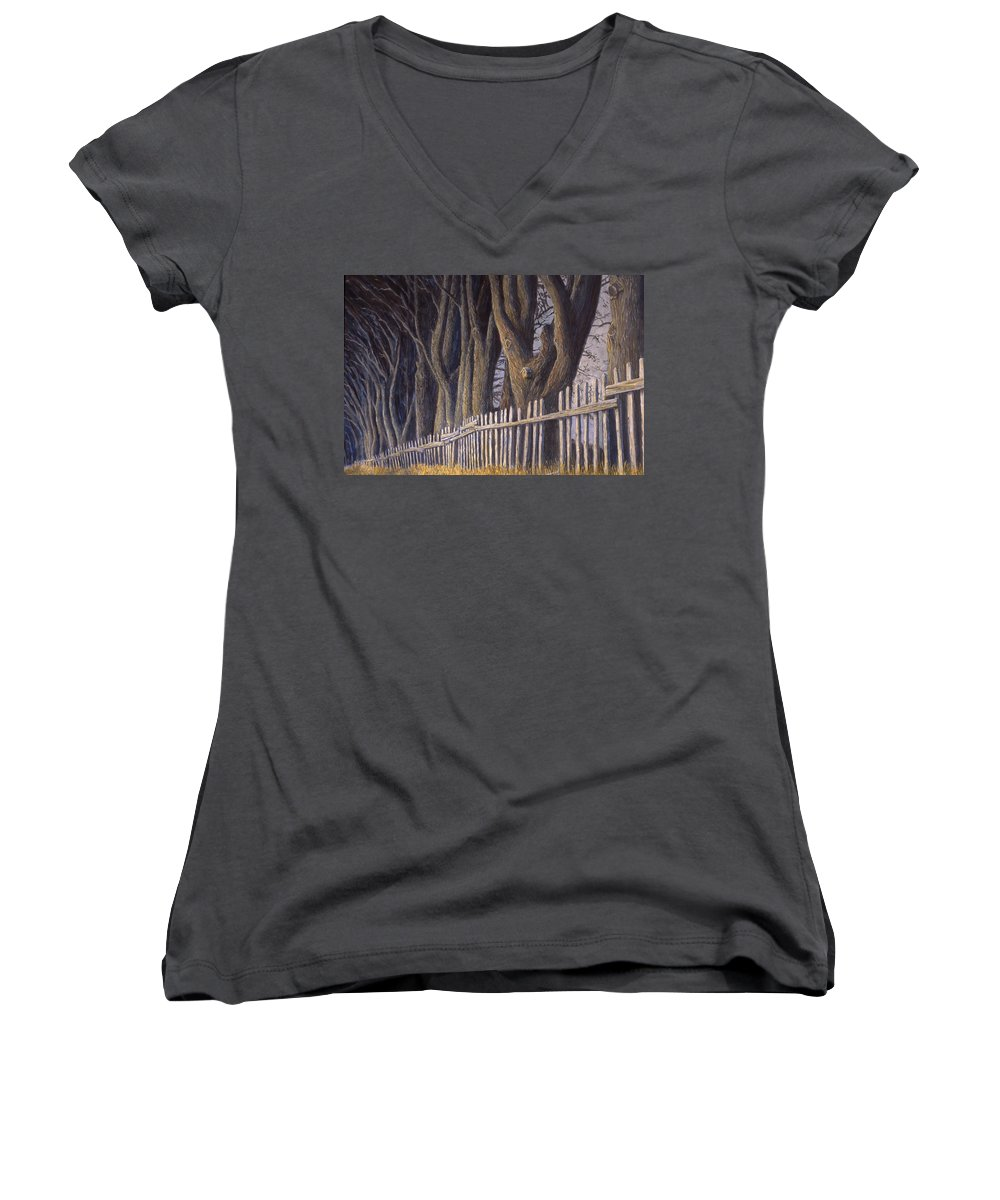 Bird House Women's V-Neck (Athletic Fit) featuring the painting The Bird House by Jerry McElroy