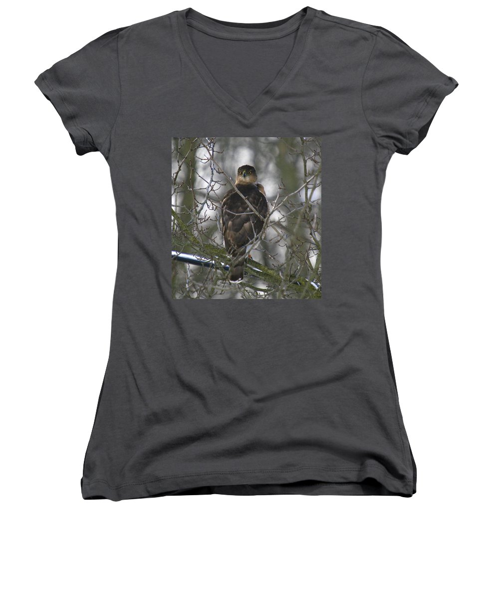 Bird Women's V-Neck T-Shirt featuring the photograph The Hawks Have Eyes by Robert Pearson