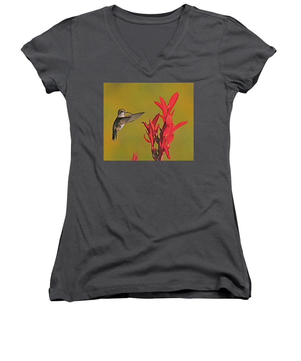 Humming Bird Women's V-Neck T-Shirt featuring the photograph The Hummer by Robert Pearson