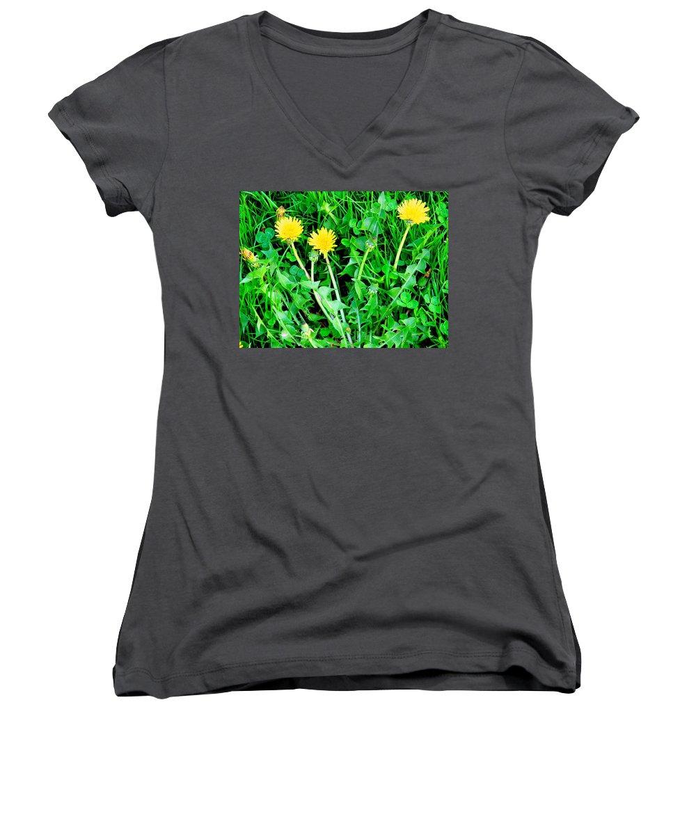 Dandylions Women's V-Neck T-Shirt featuring the photograph Three Tenders by Ian MacDonald