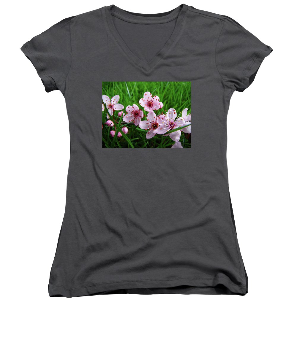 �blossoms Artwork� Women's V-Neck T-Shirt featuring the photograph Tree Blossoms 4 Spring Flowers Art Prints Giclee Flower Blossoms by Baslee Troutman