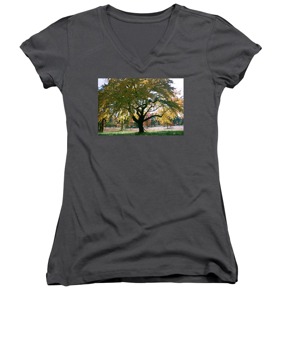 Tree Women's V-Neck (Athletic Fit) featuring the photograph Tree by Flavia Westerwelle