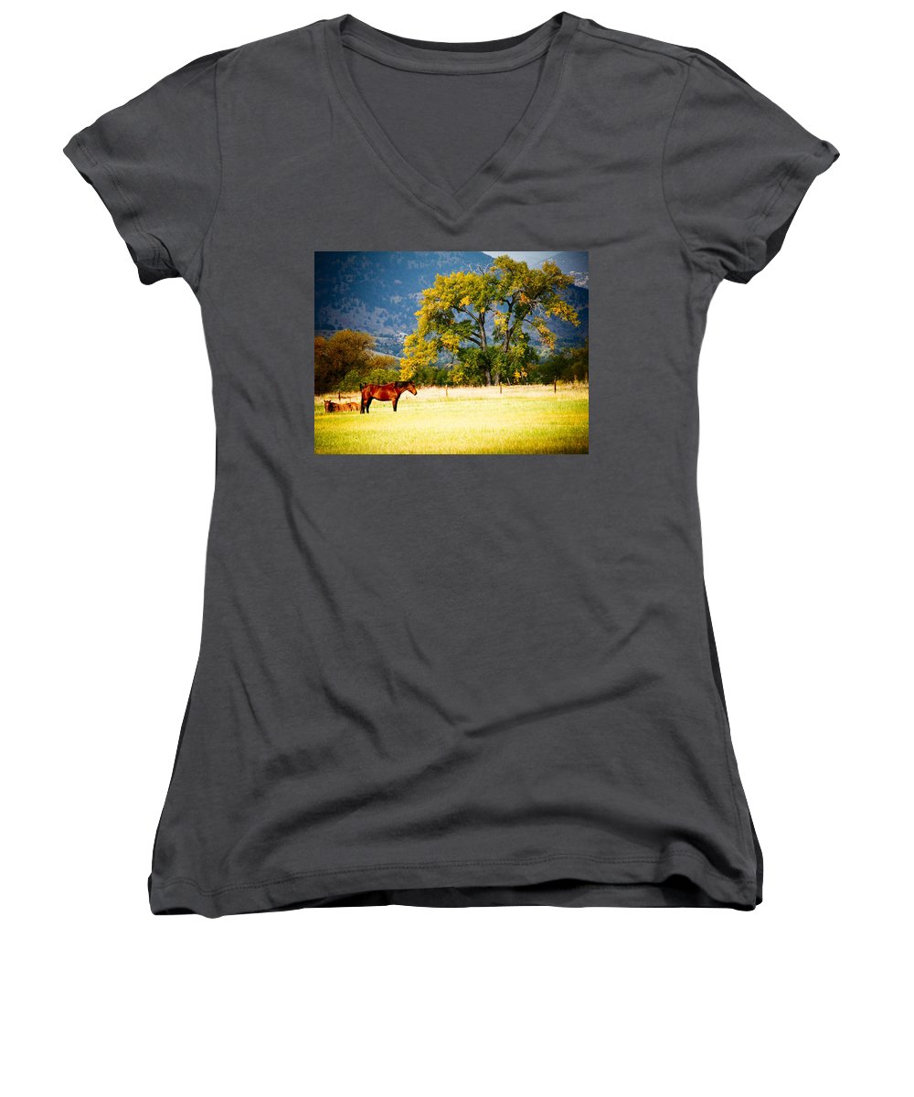 Animal Women's V-Neck T-Shirt featuring the photograph Two Horses by Marilyn Hunt