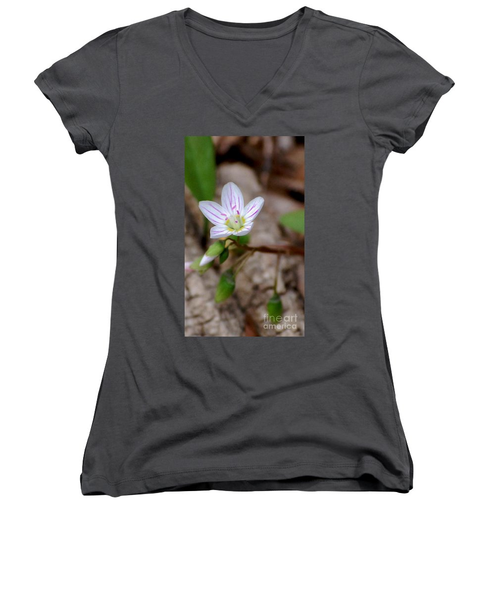 Floral Women's V-Neck T-Shirt featuring the photograph Untitiled Floral by David Lane