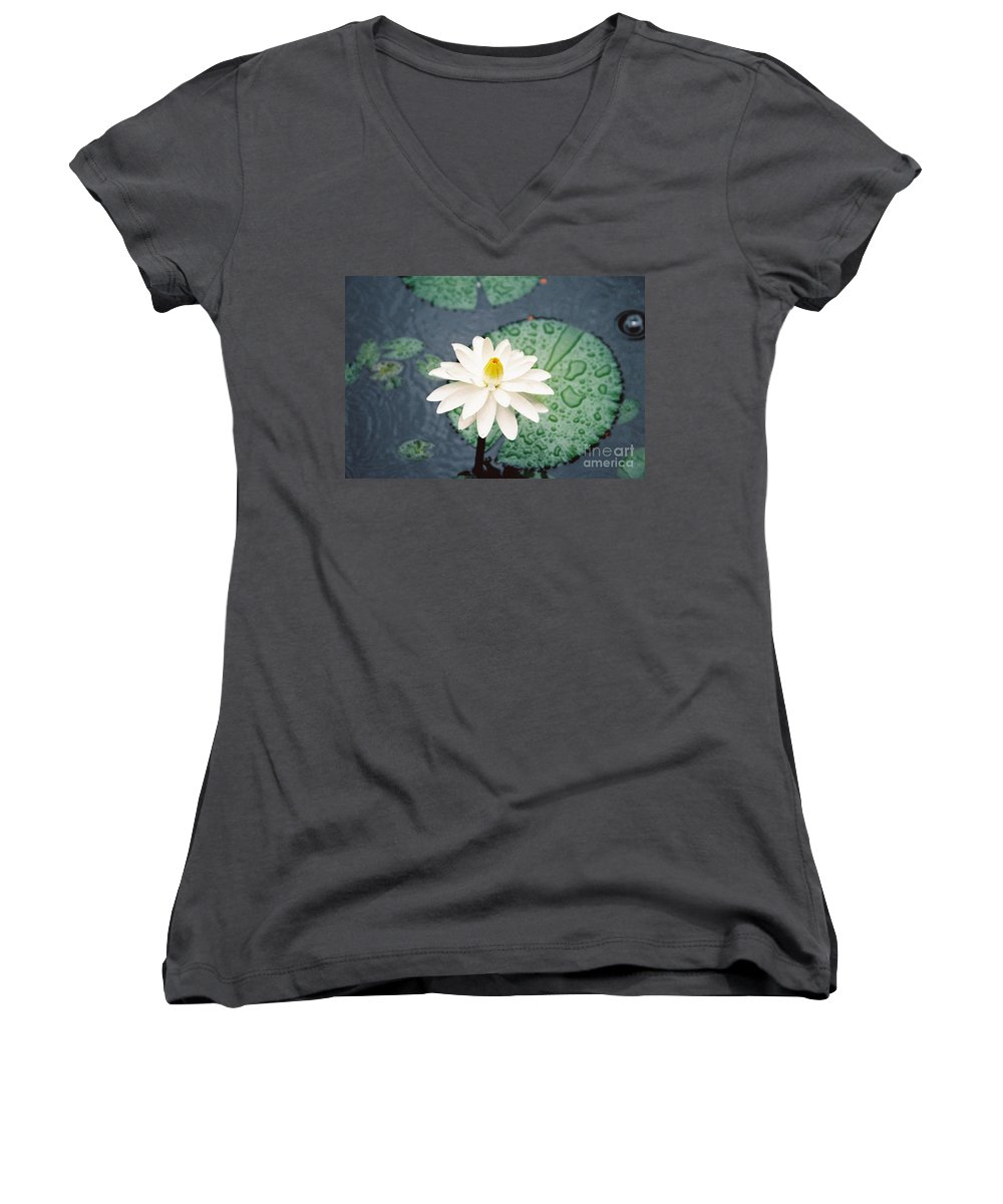 Flowers Women's V-Neck T-Shirt featuring the photograph Water Lily by Kathy McClure