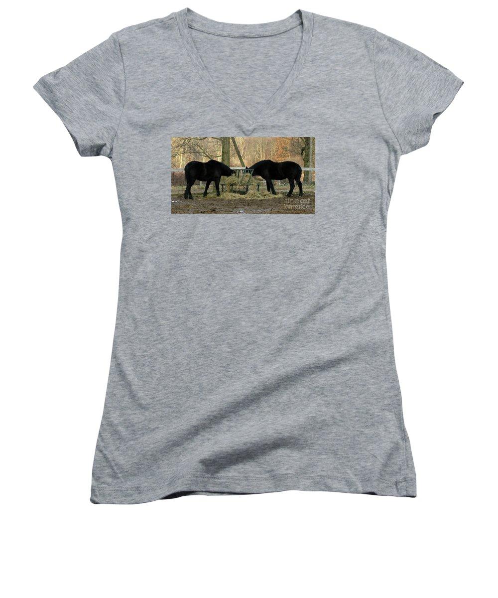 Horse Women's V-Neck T-Shirt featuring the photograph Barnyard Beauties by Ann Horn