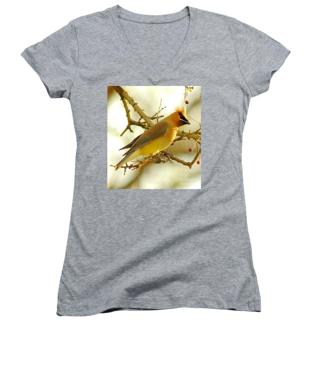 Cedar Waxing Junior V-Neck T-Shirts