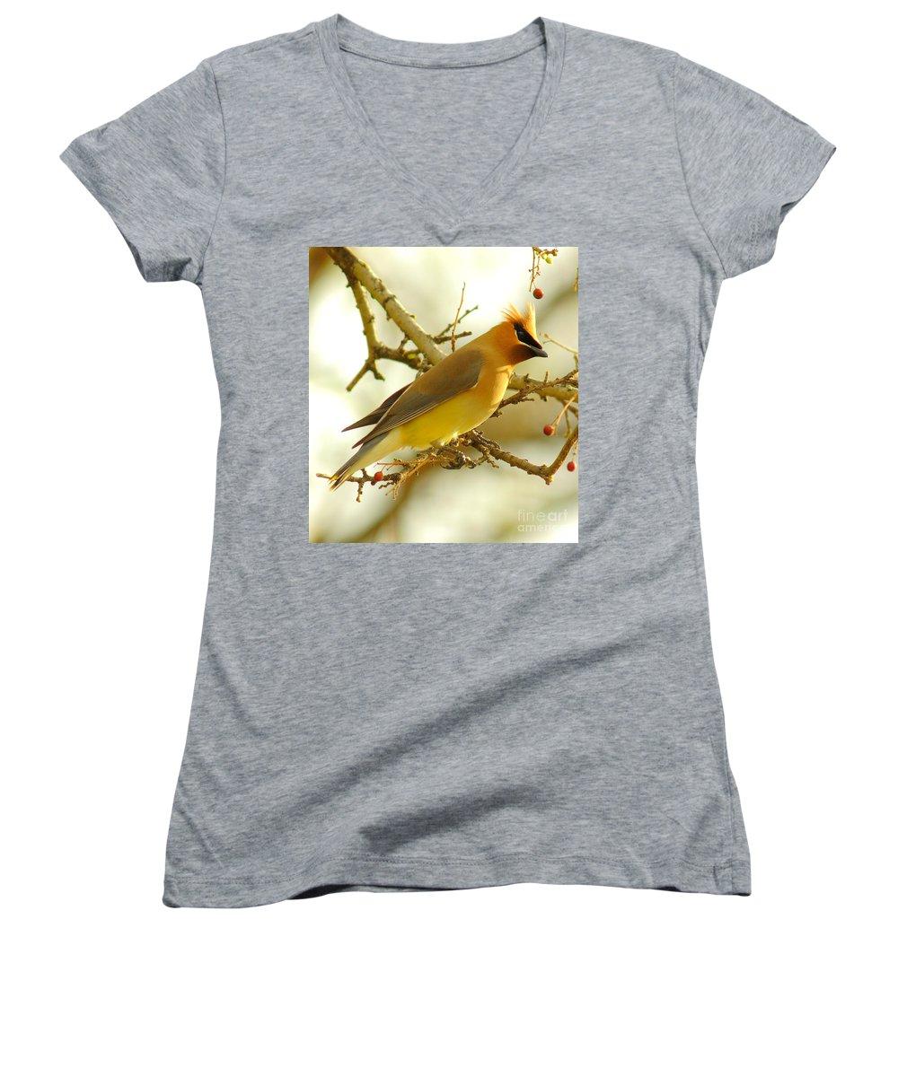 Cedar Waxing Women's V-Neck T-Shirts