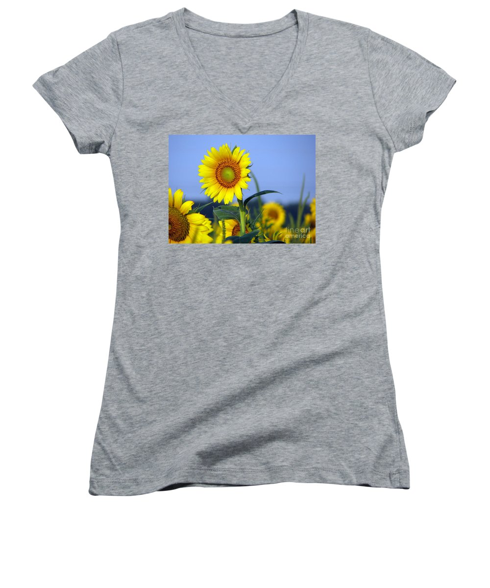 Sunflower Women's V-Neck (Athletic Fit) featuring the photograph Getting To The Sun by Amanda Barcon