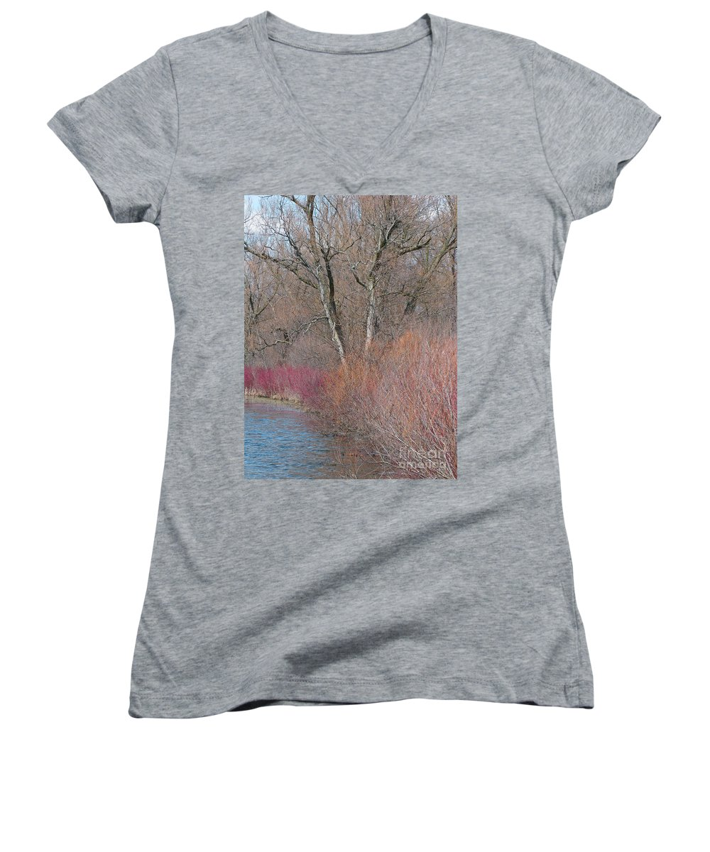 Spring Women's V-Neck T-Shirt featuring the photograph Hint Of Spring by Ann Horn