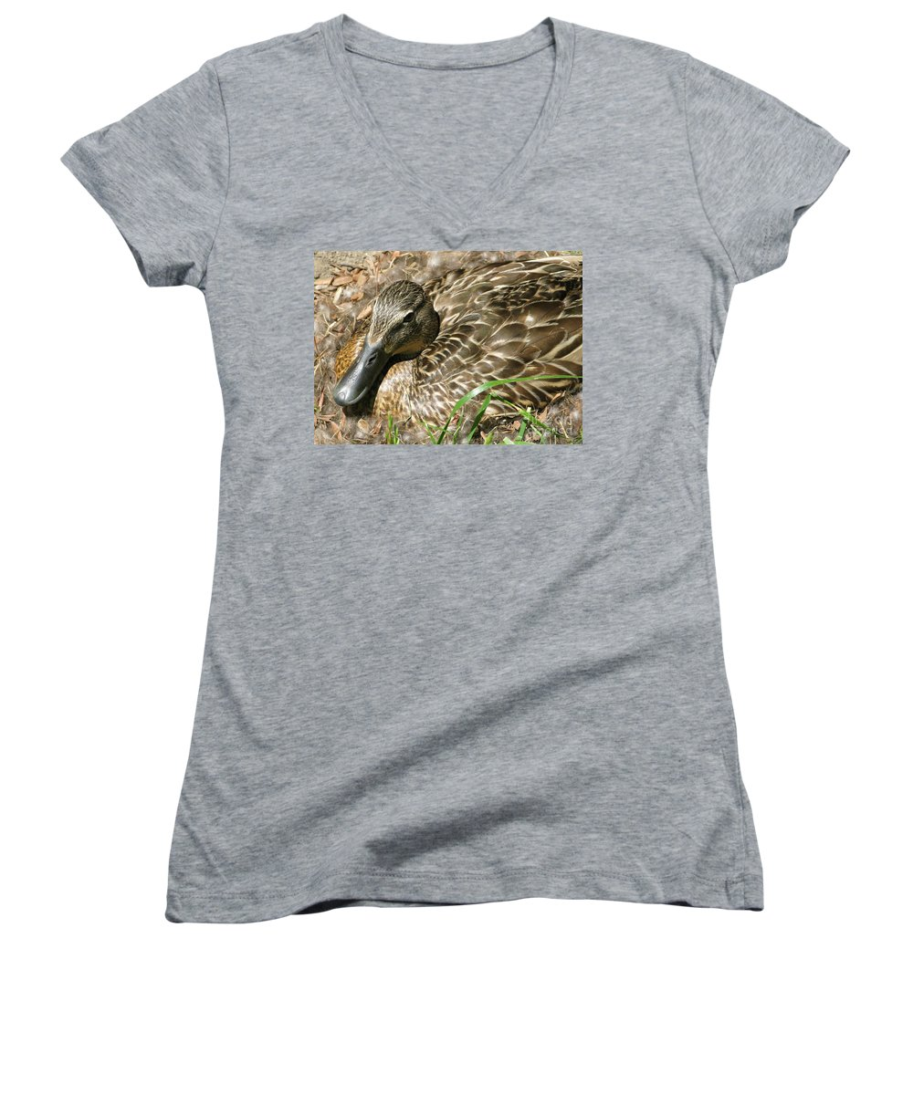 Mallard Women's V-Neck (Athletic Fit) featuring the photograph Nesting Mallard by Ann Horn