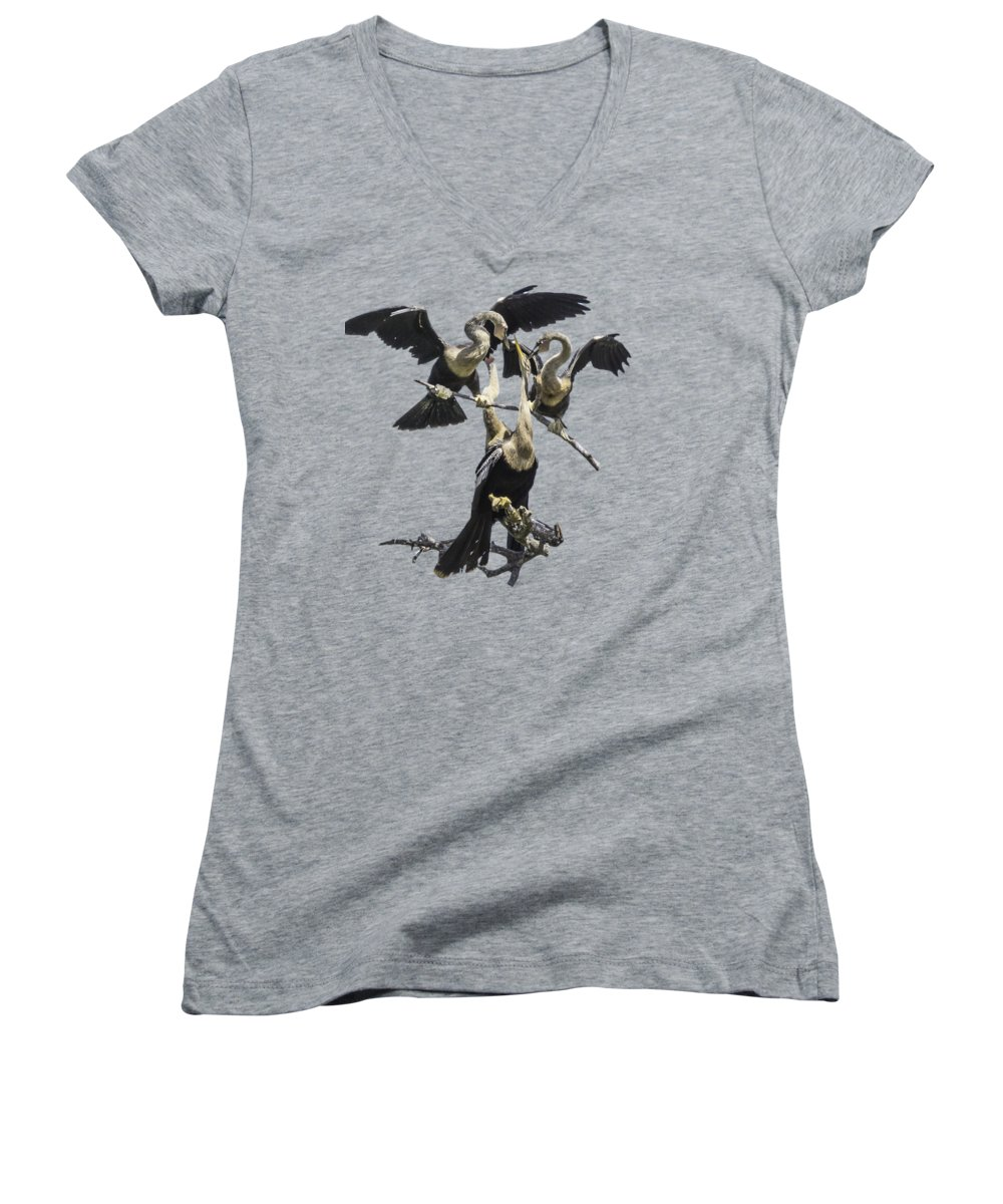 Anhinga Women's V-Neck T-Shirts