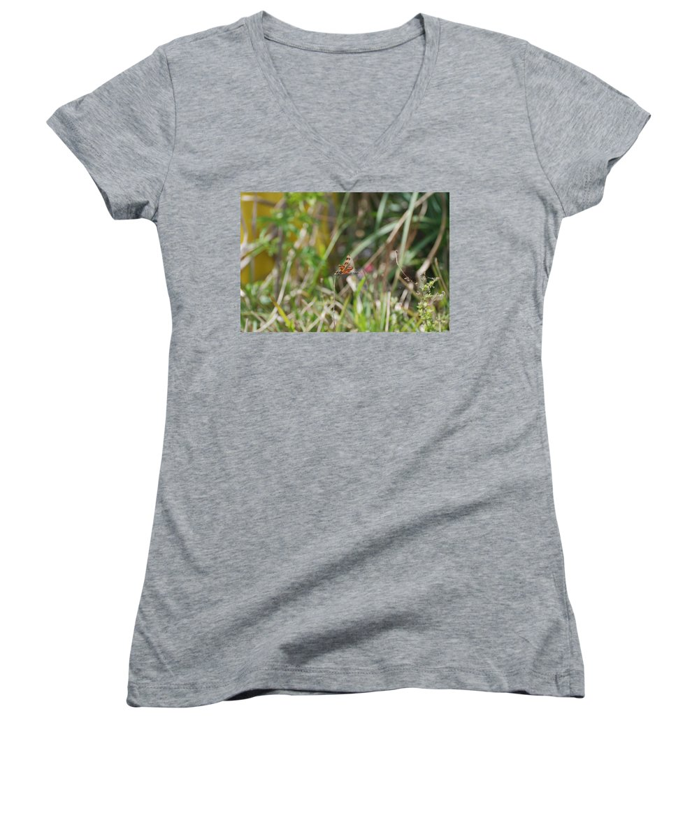 Nature Women's V-Neck T-Shirt featuring the photograph Dragon Fly by Rob Hans