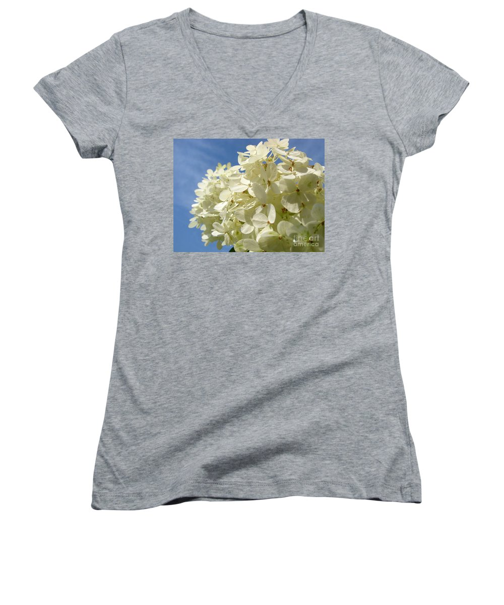 Hydranga Women's V-Neck T-Shirt featuring the photograph Hydrangea by Amanda Barcon