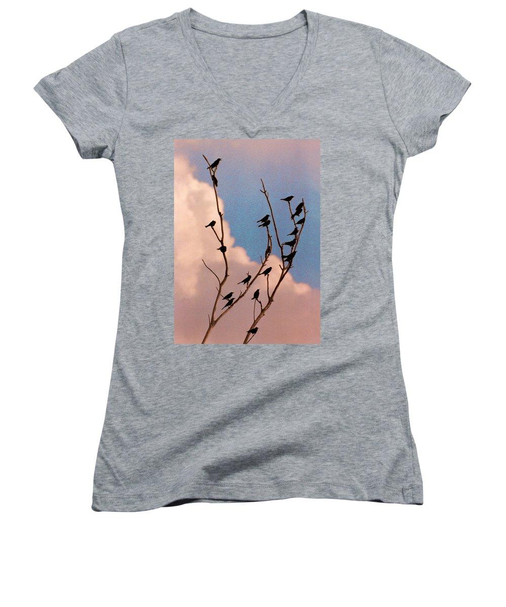 Birds Women's V-Neck T-Shirt featuring the photograph 19 Blackbirds by Steve Karol