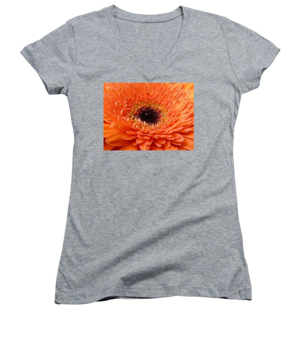 Gerbera Women's V-Neck T-Shirt featuring the photograph Gerbera by Daniel Csoka